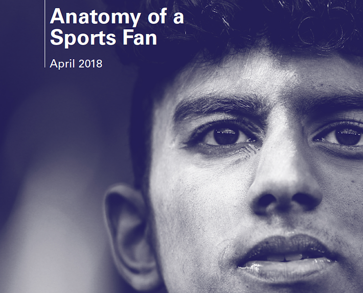 The anatomy of a sports fan – Leader's report